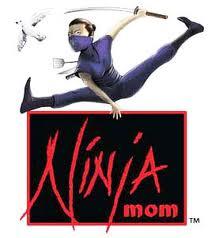 Ninjas, Moms, computers
